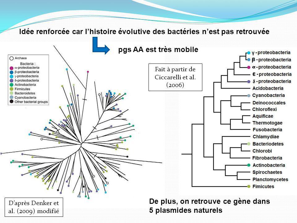 De plus, on retrouve ce gène dans 5 plasmides naturels