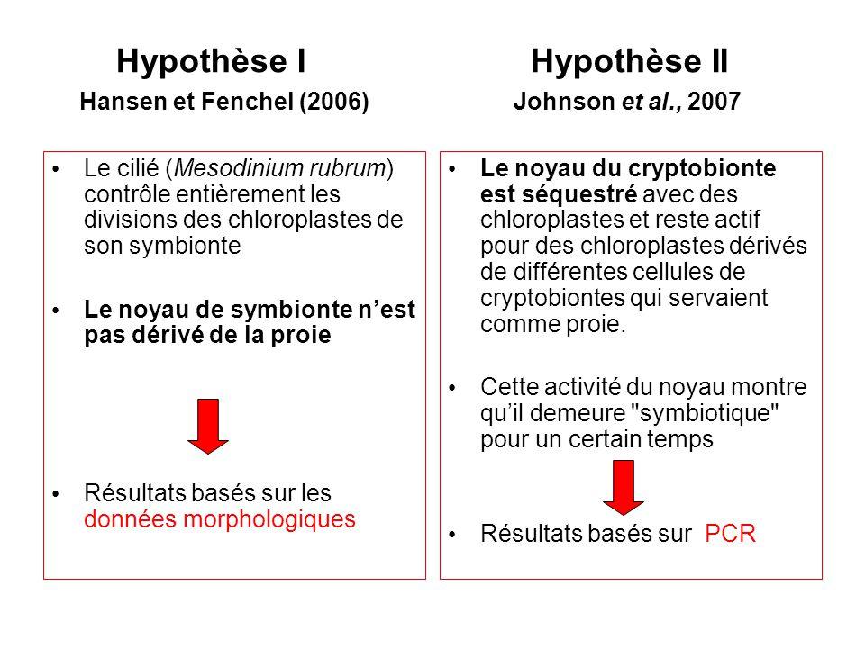 Hypothèse I Hypothèse II Hansen et Fenchel (2006) Johnson et al., 2007