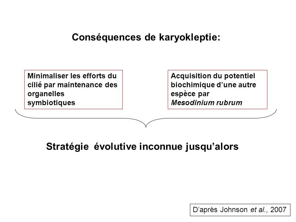 Conséquences de karyokleptie: