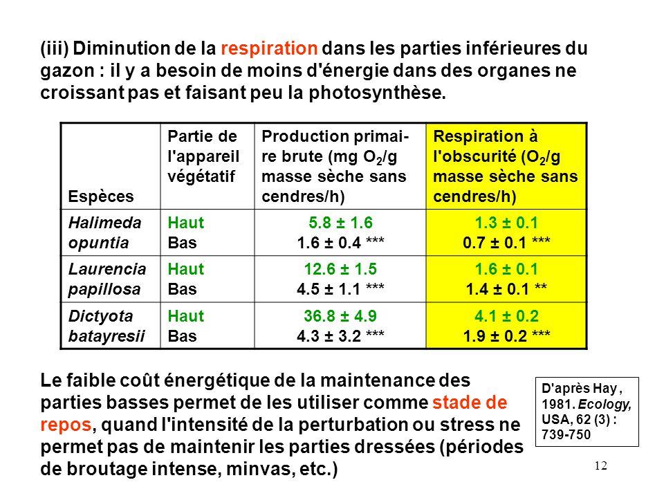 (iii) Diminution de la respiration dans les parties inférieures du gazon : il y a besoin de moins d énergie dans des organes ne croissant pas et faisant peu la photosynthèse.