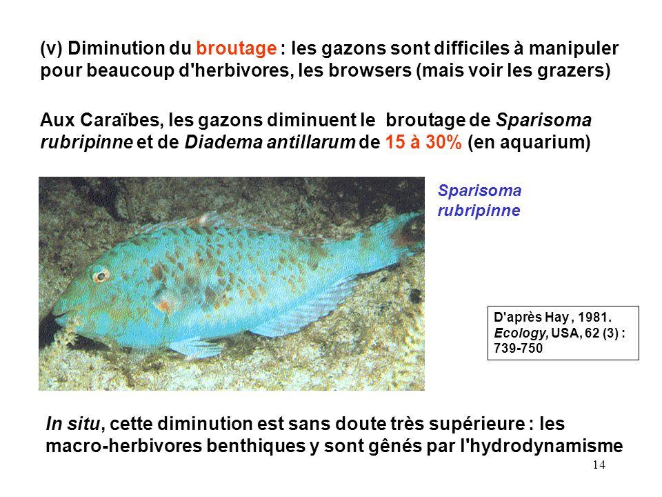 (v) Diminution du broutage : les gazons sont difficiles à manipuler pour beaucoup d herbivores, les browsers (mais voir les grazers)