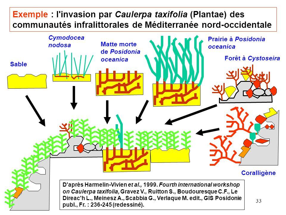 Exemple : l invasion par Caulerpa taxifolia (Plantae) des communautés infralittorales de Méditerranée nord-occidentale