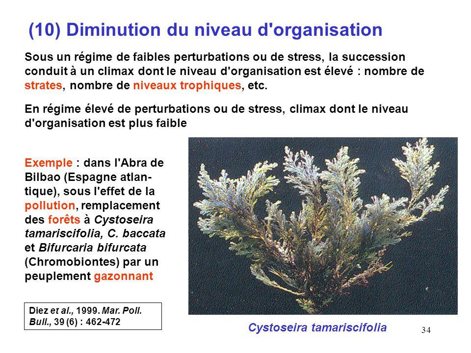 (10) Diminution du niveau d organisation