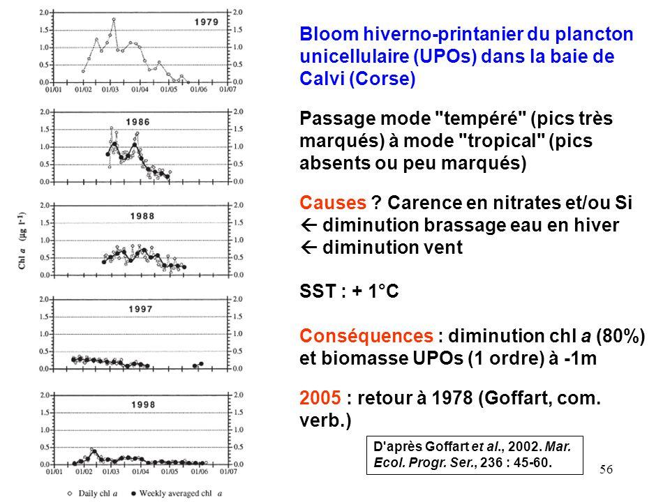 Conséquences : diminution chl a (80%) et biomasse UPOs (1 ordre) à -1m