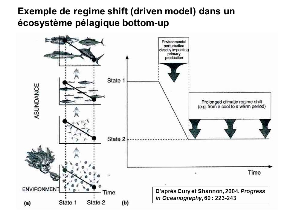 Exemple de regime shift (driven model) dans un écosystème pélagique bottom-up