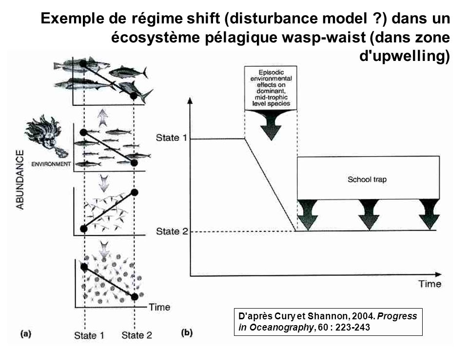 Exemple de régime shift (disturbance model