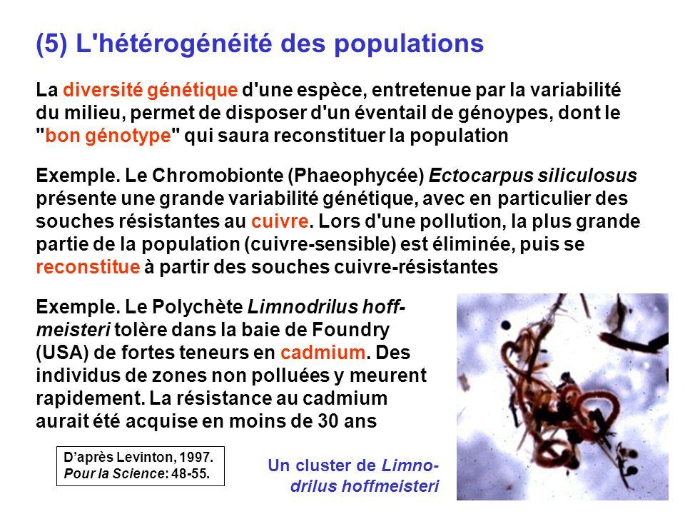 (5) L hétérogénéité des populations