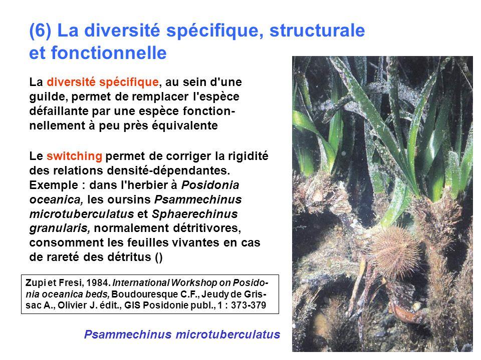 (6) La diversité spécifique, structurale et fonctionnelle