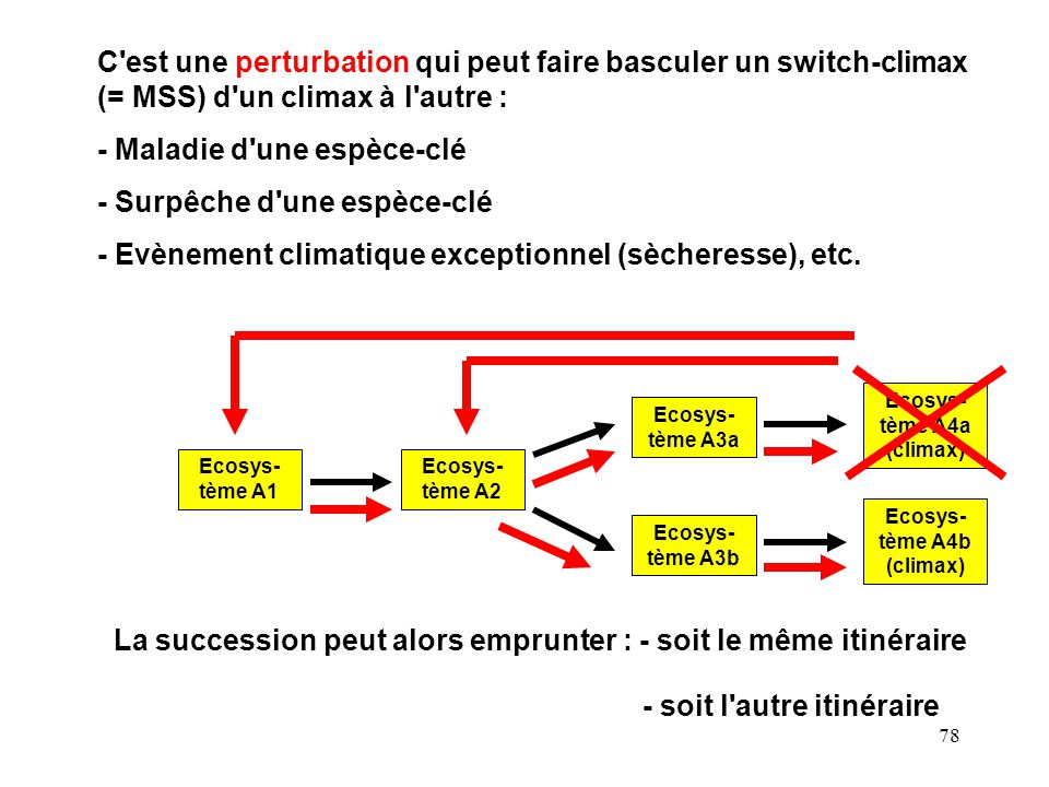 Ecosys-tème A4a (climax) Ecosys-tème A4b (climax)