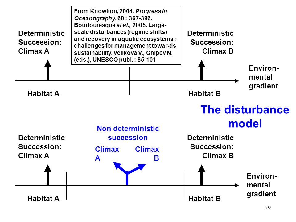 Non deterministic succession