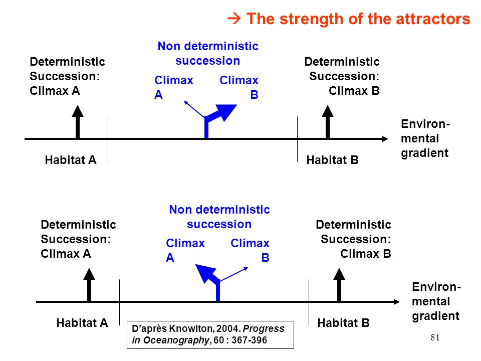Non deterministic succession Non deterministic succession