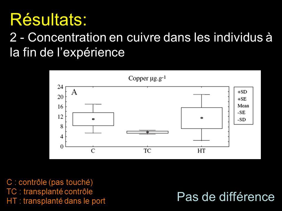 Résultats: 2 - Concentration en cuivre dans les individus à la fin de l'expérience