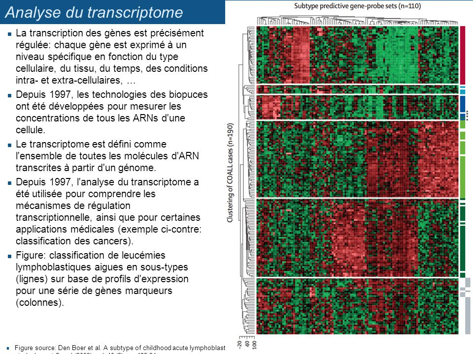 Analyse du transcriptome