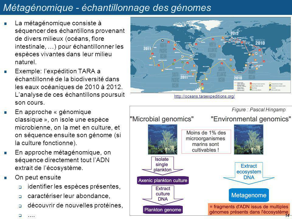 Métagénomique - échantillonnage des génomes
