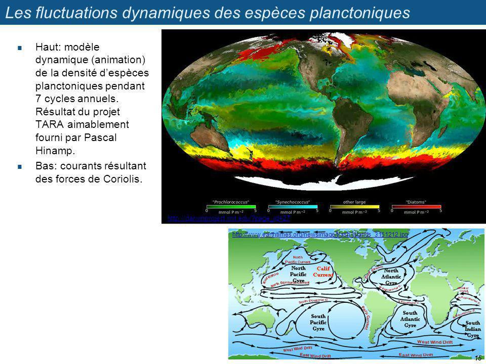 Les fluctuations dynamiques des espèces planctoniques