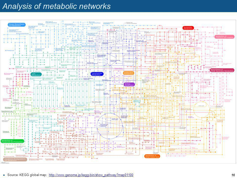 Analysis of metabolic networks