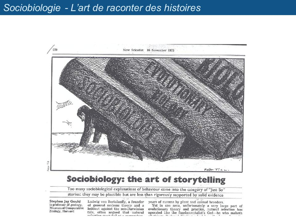 Sociobiologie - L'art de raconter des histoires