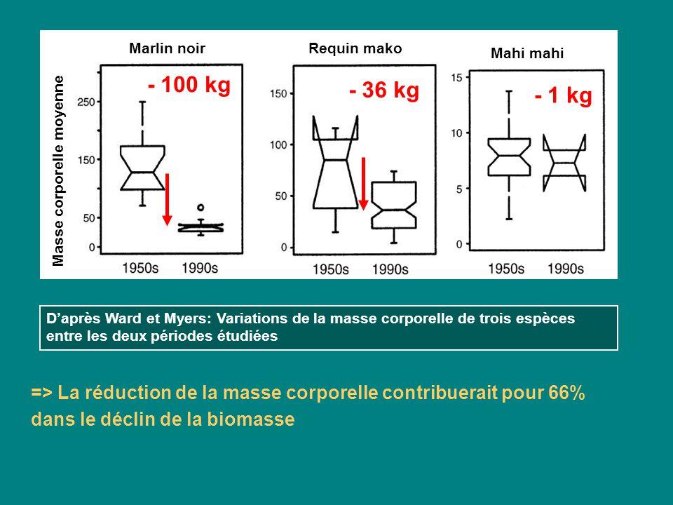 Masse corporelle moyenne