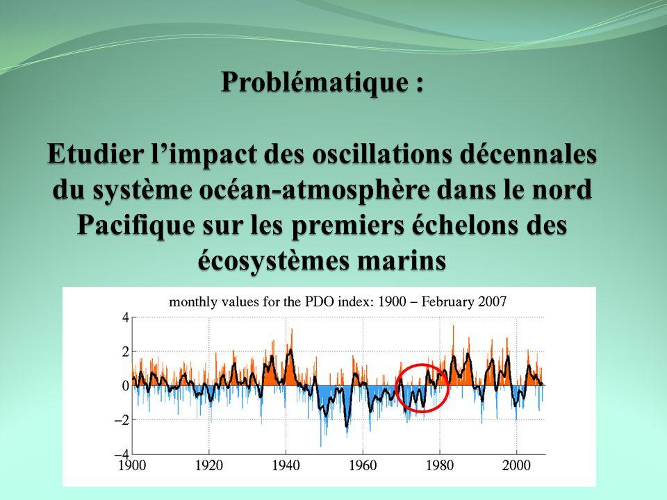 Problématique : Etudier l'impact des oscillations décennales du système océan-atmosphère dans le nord Pacifique sur les premiers échelons des écosystèmes marins