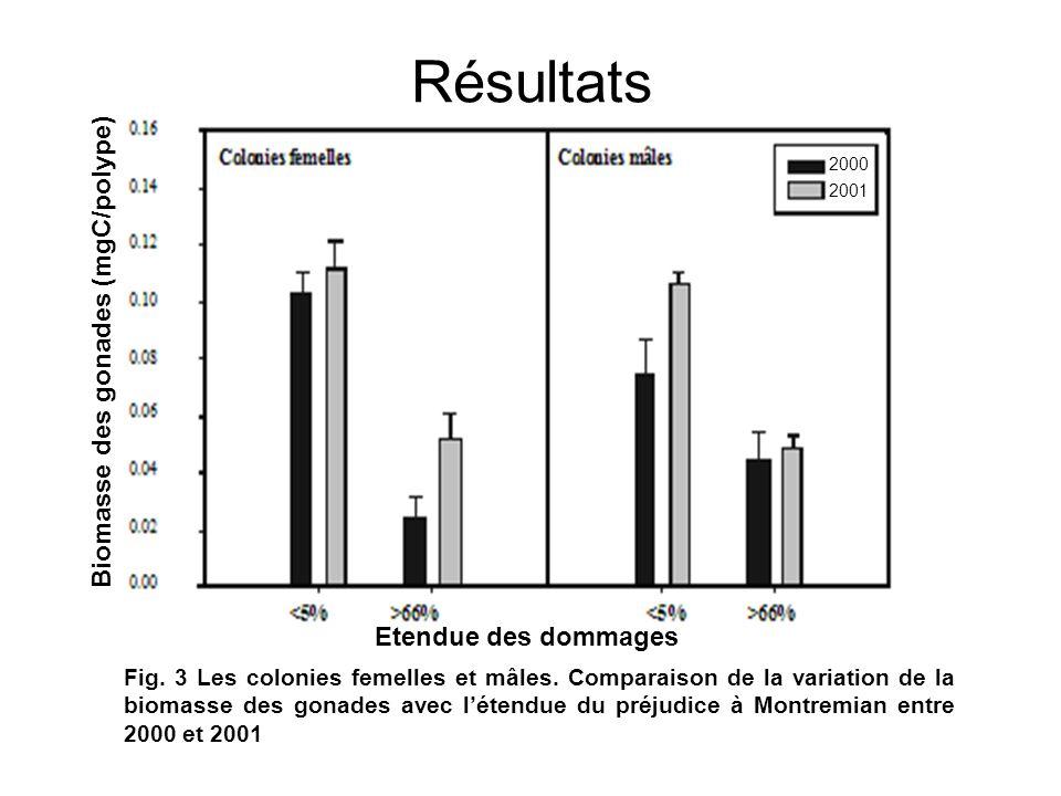 Résultats Biomasse des gonades (mgC/polype) Etendue des dommages