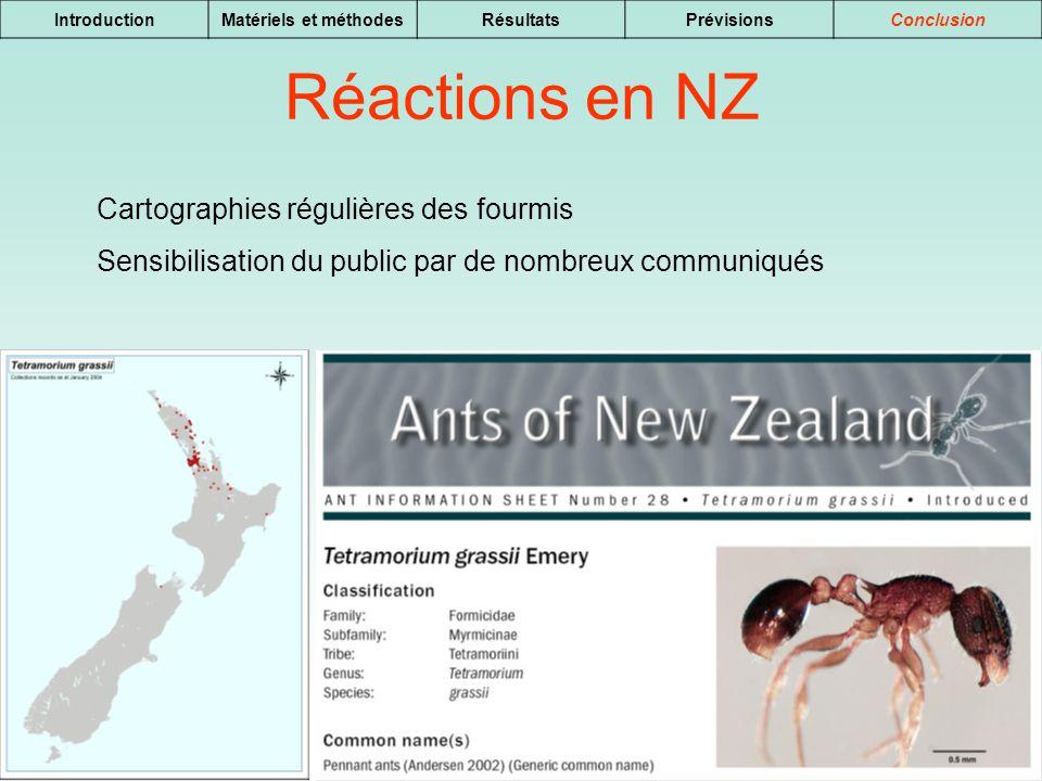 Réactions en NZ Cartographies régulières des fourmis