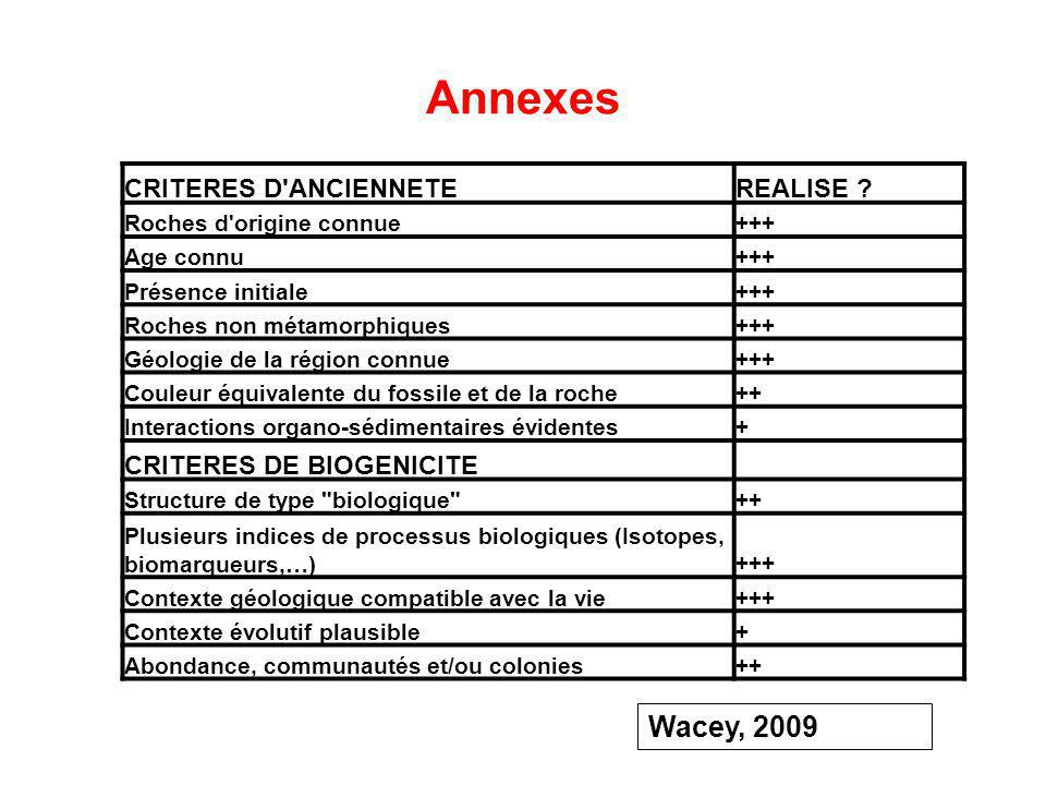 Annexes Wacey, 2009 CRITERES D ANCIENNETE REALISE