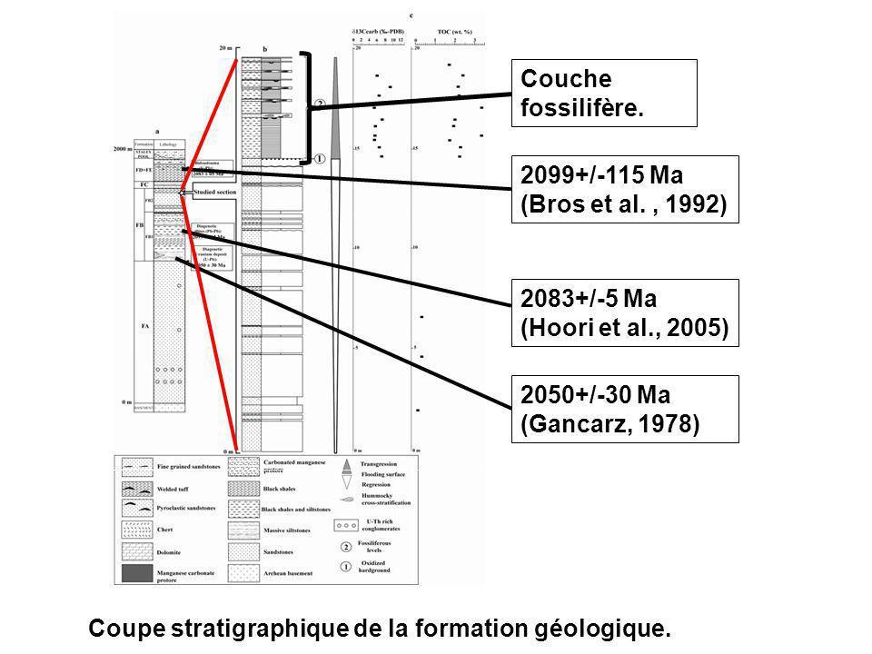 Couche fossilifère. 2099+/-115 Ma (Bros et al. , 1992) 2083+/-5 Ma (Hoori et al., 2005) 2050+/-30 Ma (Gancarz, 1978)