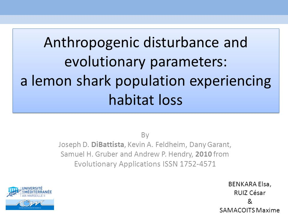 Anthropogenic disturbance and evolutionary parameters: a lemon shark population experiencing habitat loss