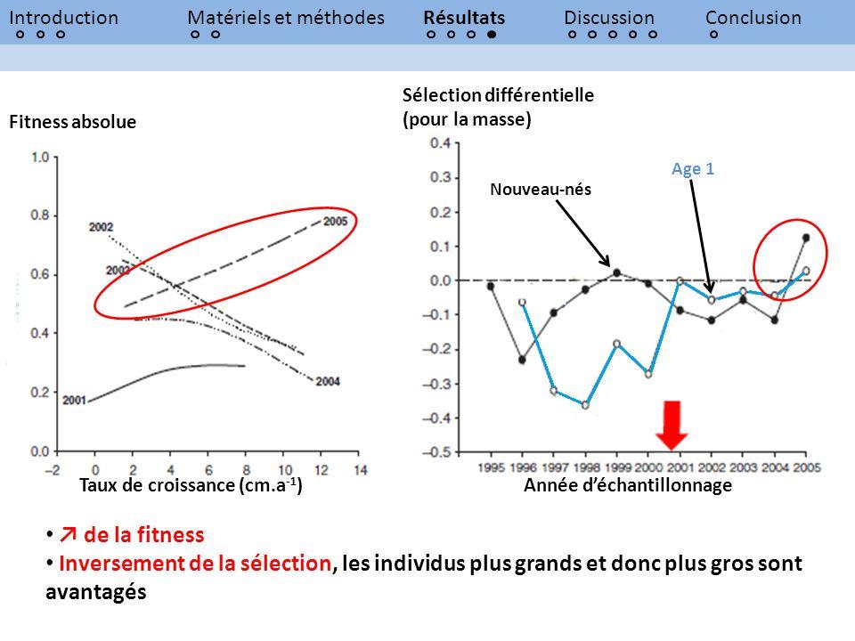 Introduction Matériels et méthodes. Résultats. Discussion. Conclusion. Sélection différentielle (pour la masse)