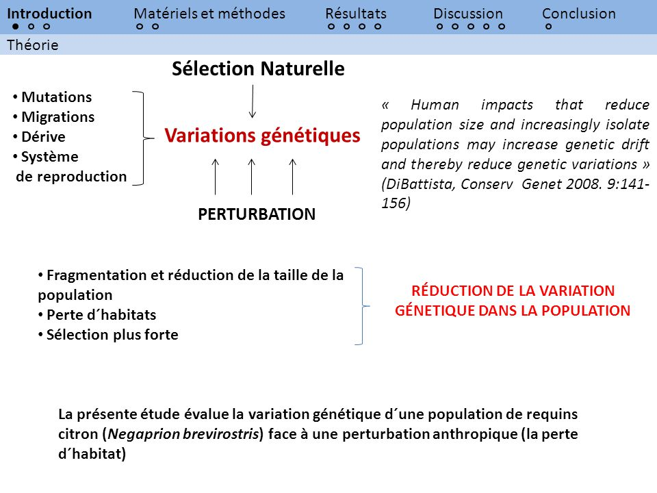 RÉDUCTION DE LA VARIATION GÉNETIQUE DANS LA POPULATION