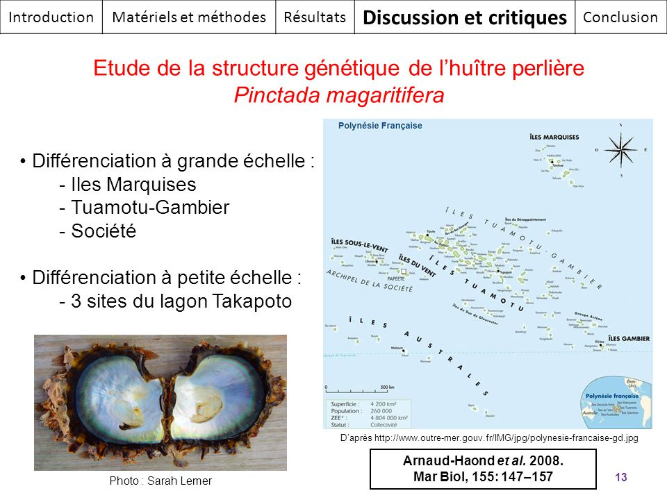Discussion et critiques
