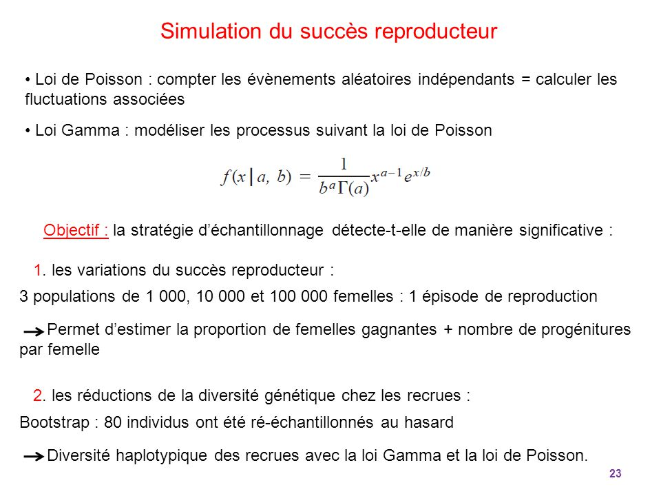 Simulation du succès reproducteur