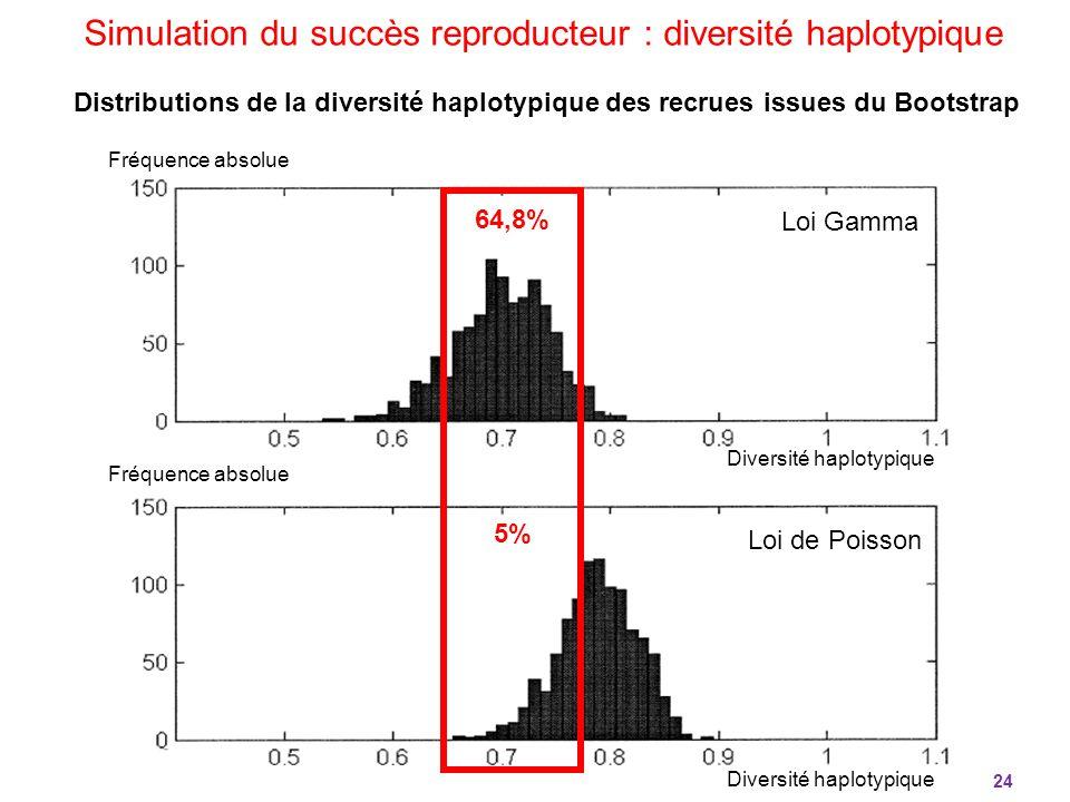 Simulation du succès reproducteur : diversité haplotypique