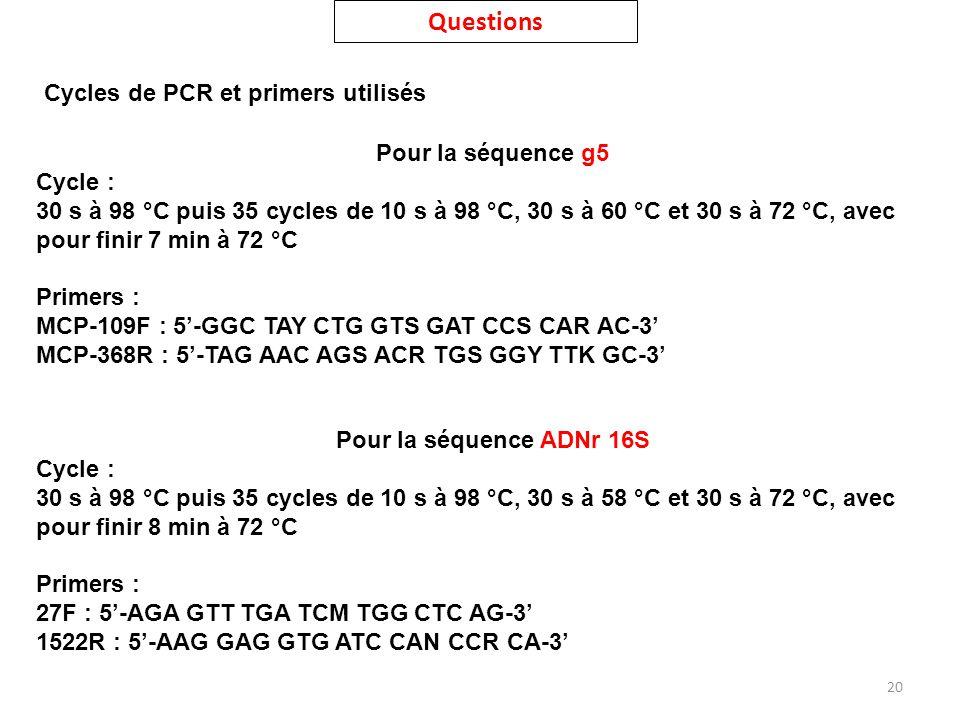 Questions Cycles de PCR et primers utilisés Pour la séquence g5
