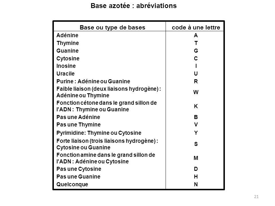 Base azotée : abréviations