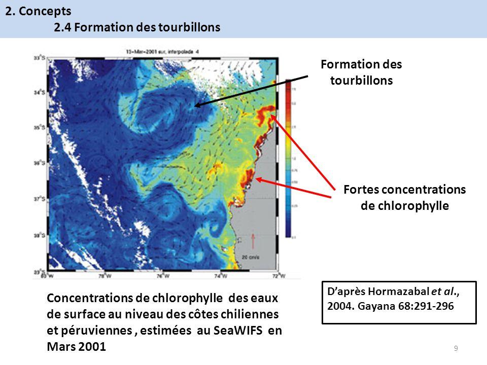 Formation des tourbillons Fortes concentrations de chlorophylle