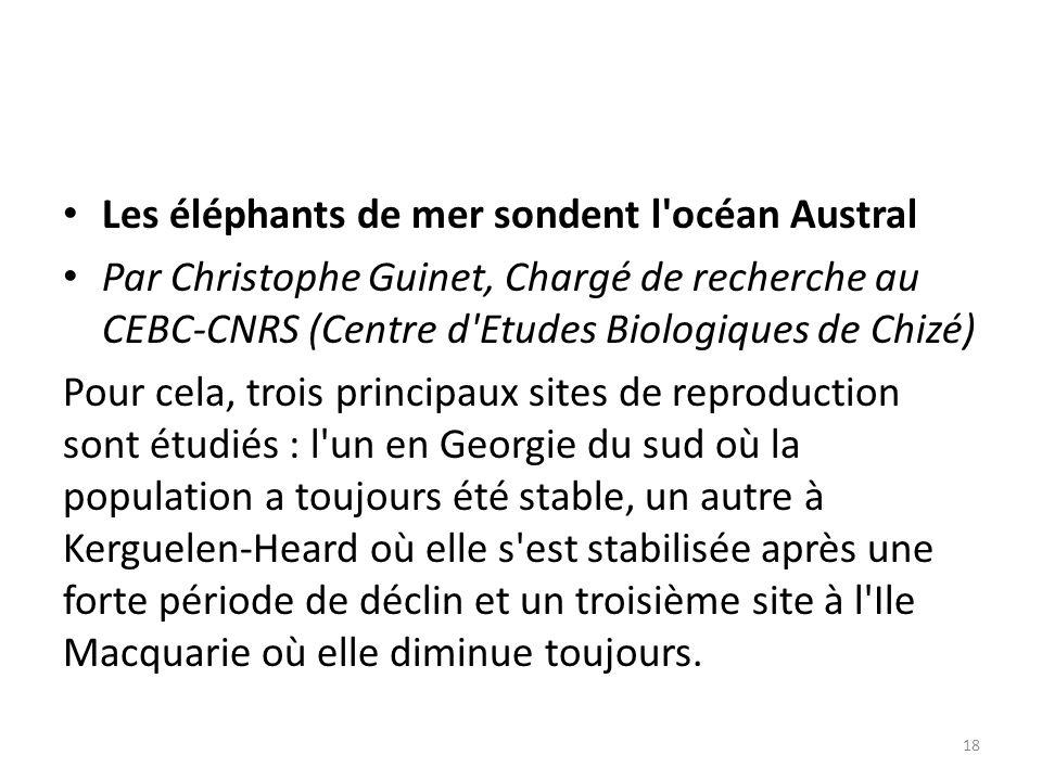 Les éléphants de mer sondent l océan Austral