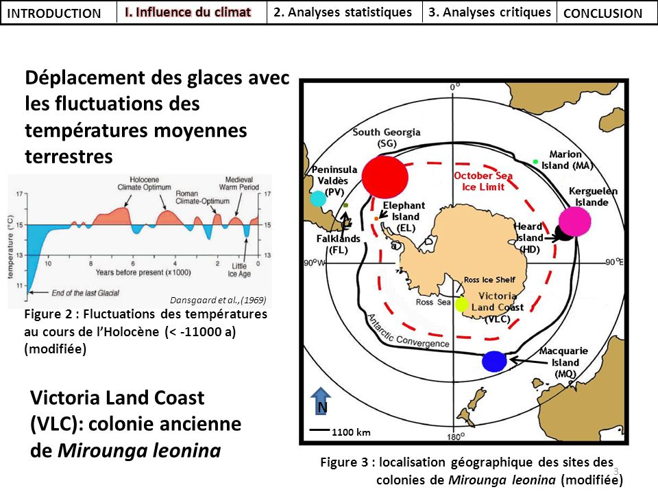 Victoria Land Coast (VLC): colonie ancienne de Mirounga leonina