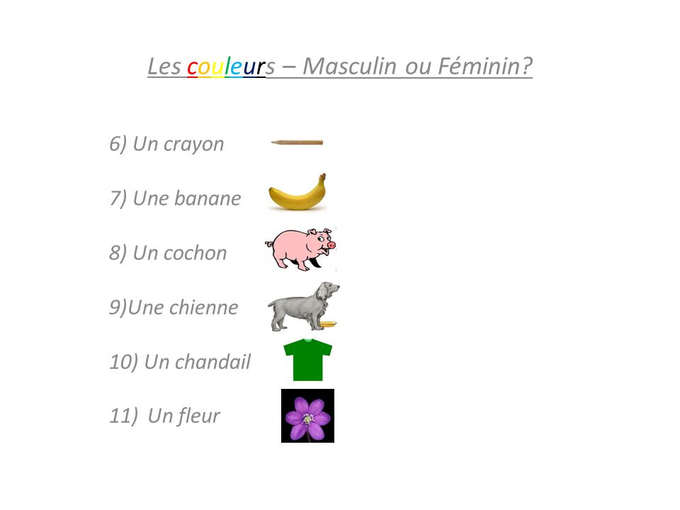 Les couleurs – Masculin ou Féminin