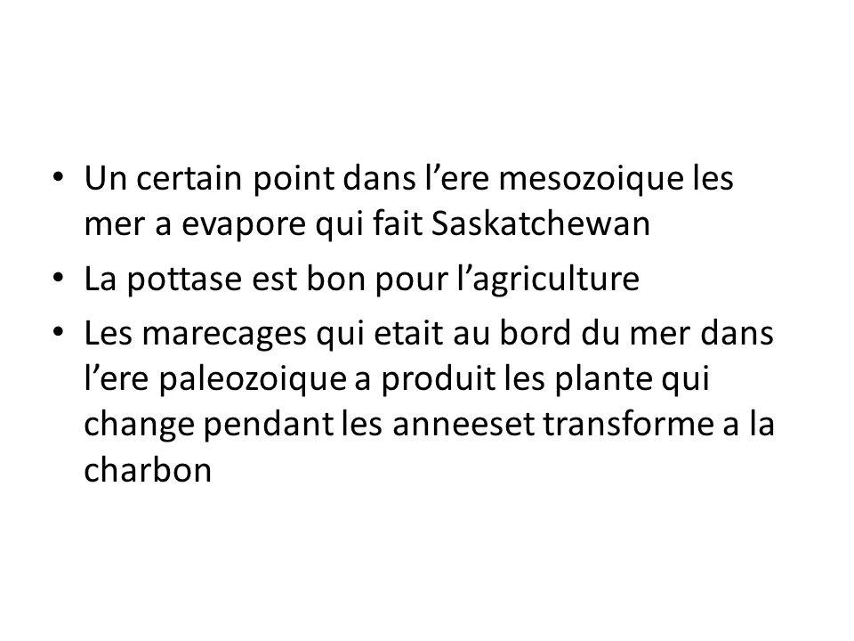 Un certain point dans l'ere mesozoique les mer a evapore qui fait Saskatchewan