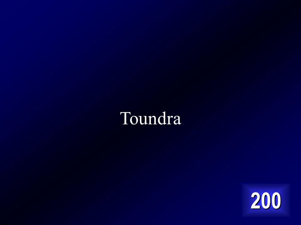Toundra 200