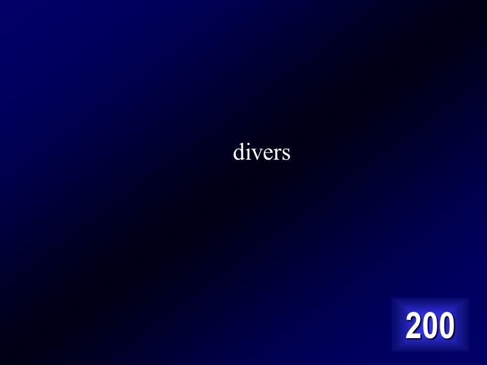 divers 200