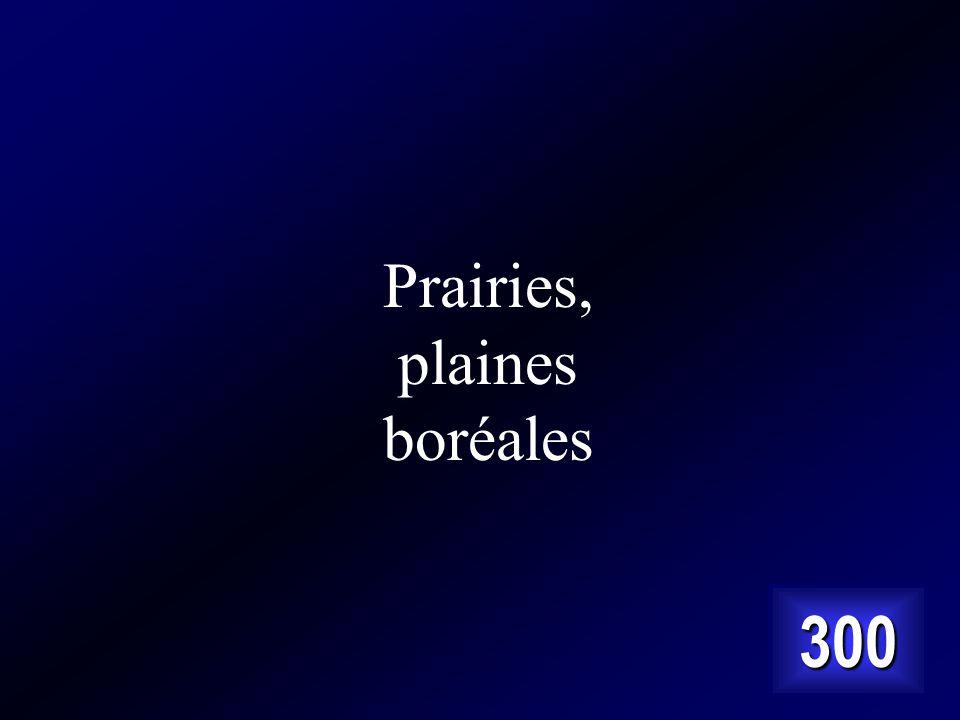 Prairies, plaines boréales