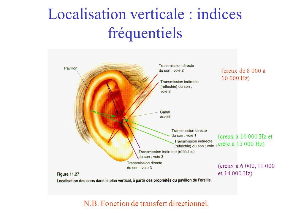 Localisation verticale : indices fréquentiels