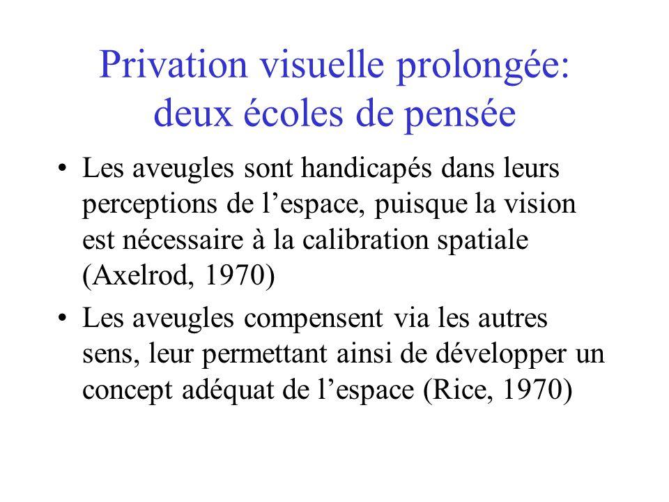 Privation visuelle prolongée: deux écoles de pensée