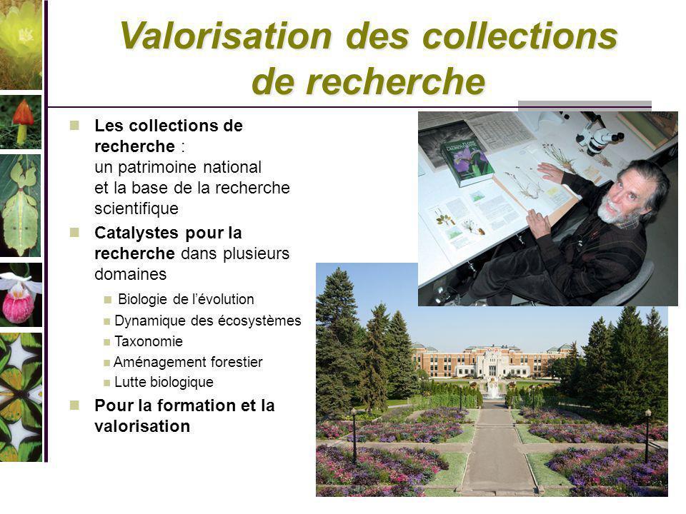 Valorisation des collections de recherche