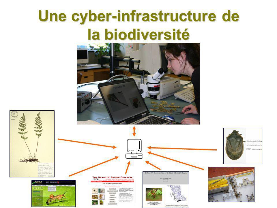Une cyber-infrastructure de la biodiversité