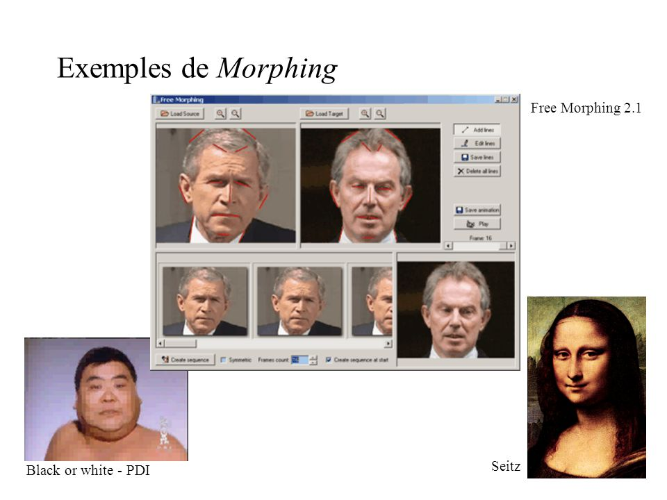 Exemples de Morphing Free Morphing 2.1 Seitz Black or white - PDI