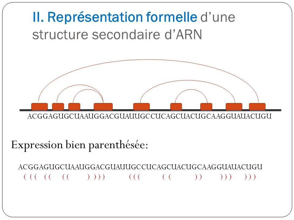 II. Représentation formelle d'une structure secondaire d'ARN