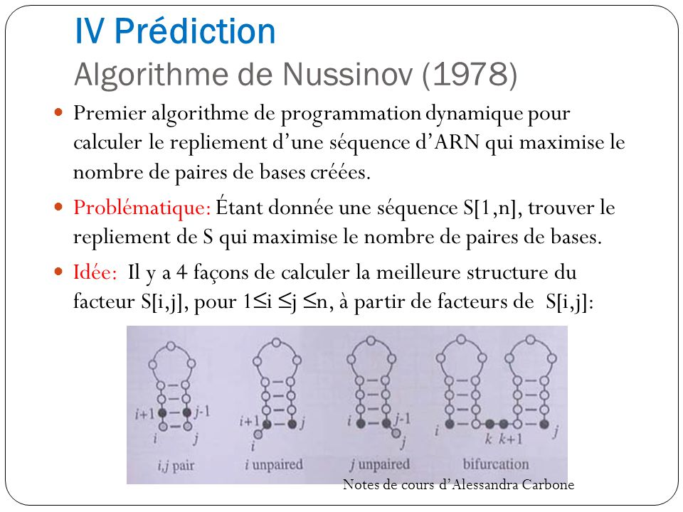 IV Prédiction Algorithme de Nussinov (1978)